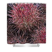 Cotton-top Cactus Detail Shower Curtain