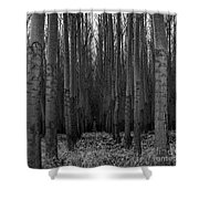 Cottonwood Alley Monochrome Shower Curtain