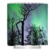 Cottonwood Aurora Shower Curtain