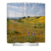 Cottonwood Canyon Shower Curtain