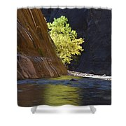 Cottonwood On The Virgin River Shower Curtain