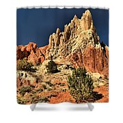 Cottonwood Rainbows Shower Curtain