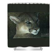 Cougar-7688 Shower Curtain