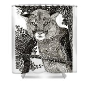 Cougar From Colorado Shower Curtain