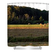 Country Bales  Shower Curtain