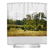 Country Beauty Shower Curtain