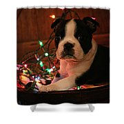 Country Christmas Puppy Shower Curtain