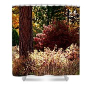 Country Color 28 Shower Curtain