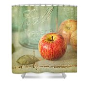Country Comfort Shower Curtain by Amy Weiss