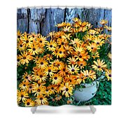 Country Floral Shower Curtain