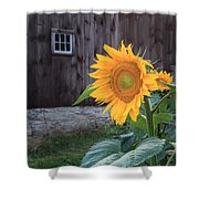 Country Flower Shower Curtain