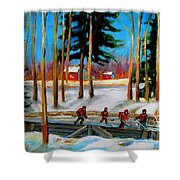 Country Hockey Rink Shower Curtain