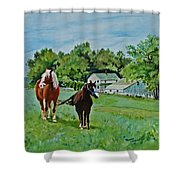 Country Horses Shower Curtain