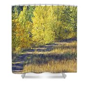 Country Lane Digital Oil Painting Shower Curtain