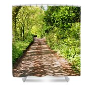 Country Lane Painting Shower Curtain