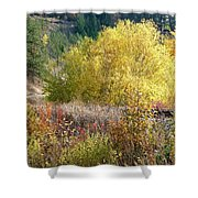 Country Railway Crossing Shower Curtain