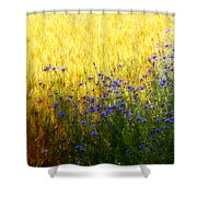 Country Road 2 Shower Curtain