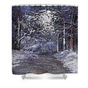 Country Road On A Wintery Night Shower Curtain