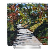 Country Road Two Shower Curtain