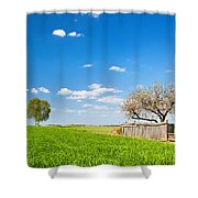 Countryside Landscape During Spring With Solitary Trees And Fence Shower Curtain