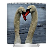 Courting Swans Shower Curtain