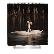 Courtship Painting Shower Curtain