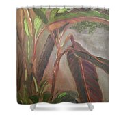 Courtyard Bananas Shower Curtain