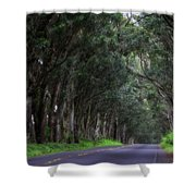 Covered By Trees Shower Curtain