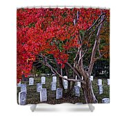 Covered In Fall Colors Shower Curtain