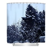 Covered Snow Trees Shower Curtain