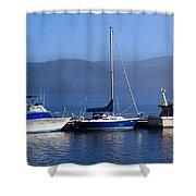 Cow Bay Trio Shower Curtain