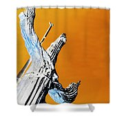 Cow Boy Inverted Shower Curtain