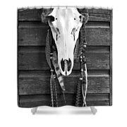 Cow Elk Skull And Feathers Shower Curtain