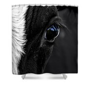 Cow Hey You Looking At Me Shower Curtain