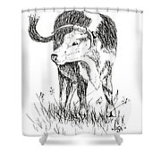 Cow In Pen And Ink Shower Curtain