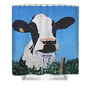 Cow On A Ditch Shower Curtain