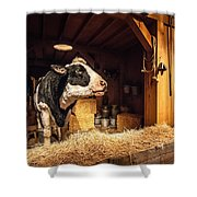 Cow On The Farm Shower Curtain