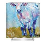 Cow Painting Shower Curtain