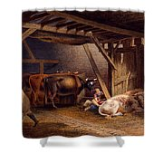 Cow Shed Shower Curtain by Robert Hills