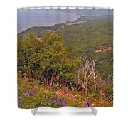 Cow Vetch In Cape Breton Highlands Np-ns Shower Curtain