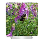 Cow Vetch Wildflowers And Bumble Bee Shower Curtain