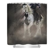 Cowgirl And Knight Shower Curtain
