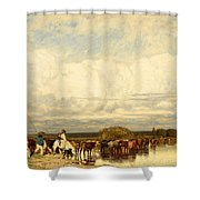 Cows Crossing A Ford Shower Curtain