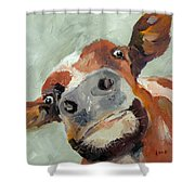 Cow's Eye View Shower Curtain