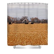 Cows In The Corn Shower Curtain