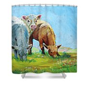 Cows Landscape Shower Curtain