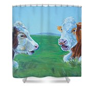Cows Lying Down Chatting Shower Curtain