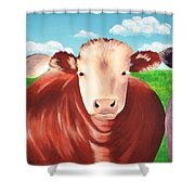 Cows Out To Pasture Shower Curtain