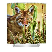 Coyote In The Aloe Shower Curtain
