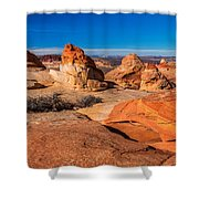 Coyote Lines Shower Curtain by Chad Dutson